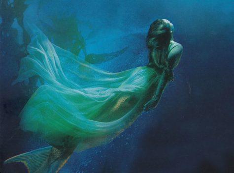 Wonders Undersea