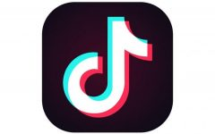 A Little Bit About TikTok